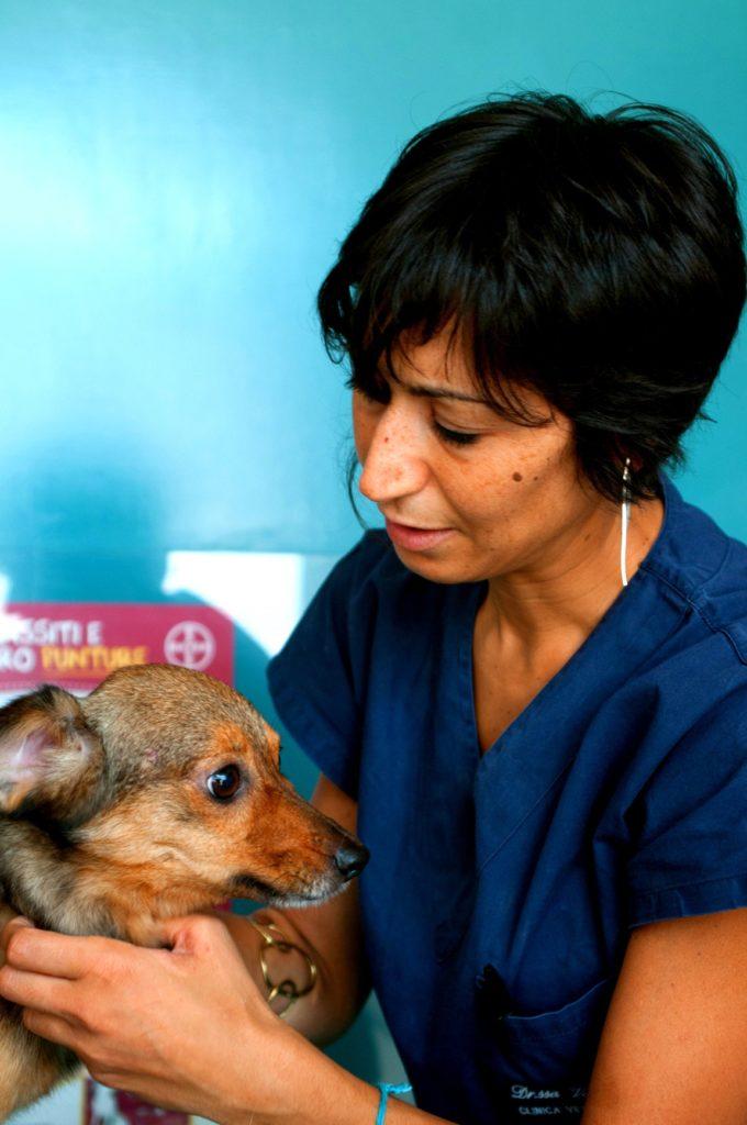 vaccino-leishmaniosi-letfeida-cane-clinica-veterinaria-ostia-lido-roma-cvol